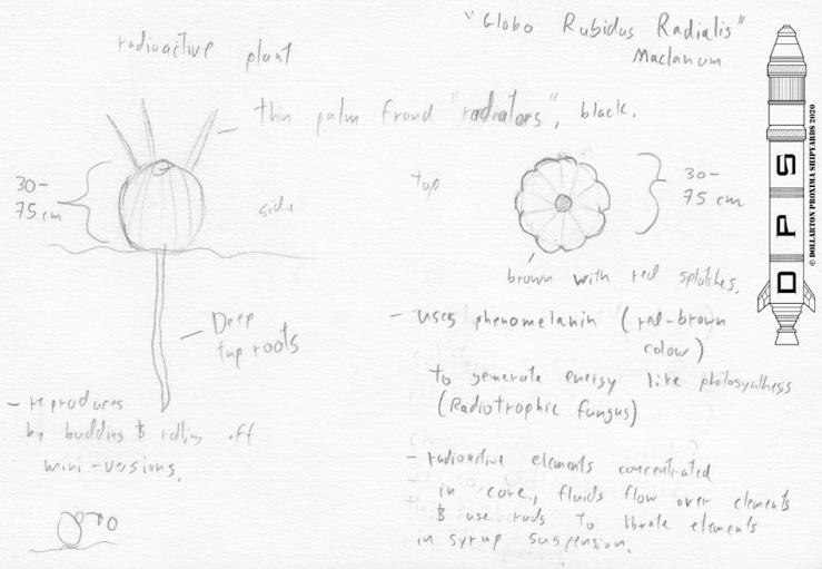 Plant Radioactive Melon